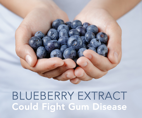 Blueberry Extract Could Fight Gum Disease